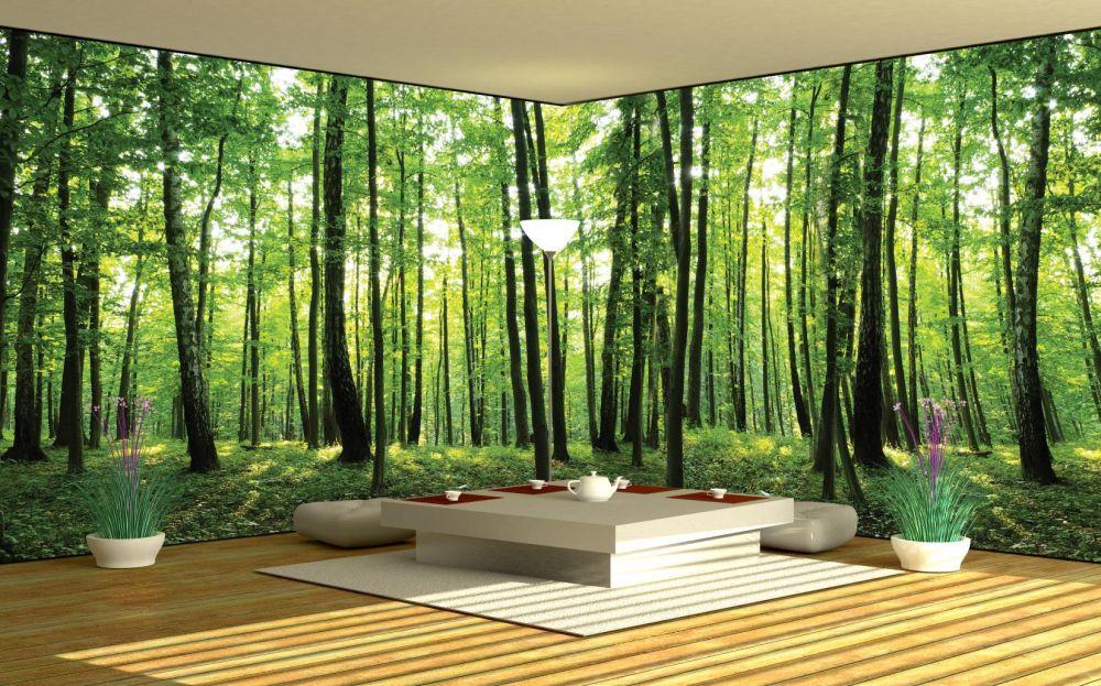 fototapeta naro nikowa las 444vee. Black Bedroom Furniture Sets. Home Design Ideas